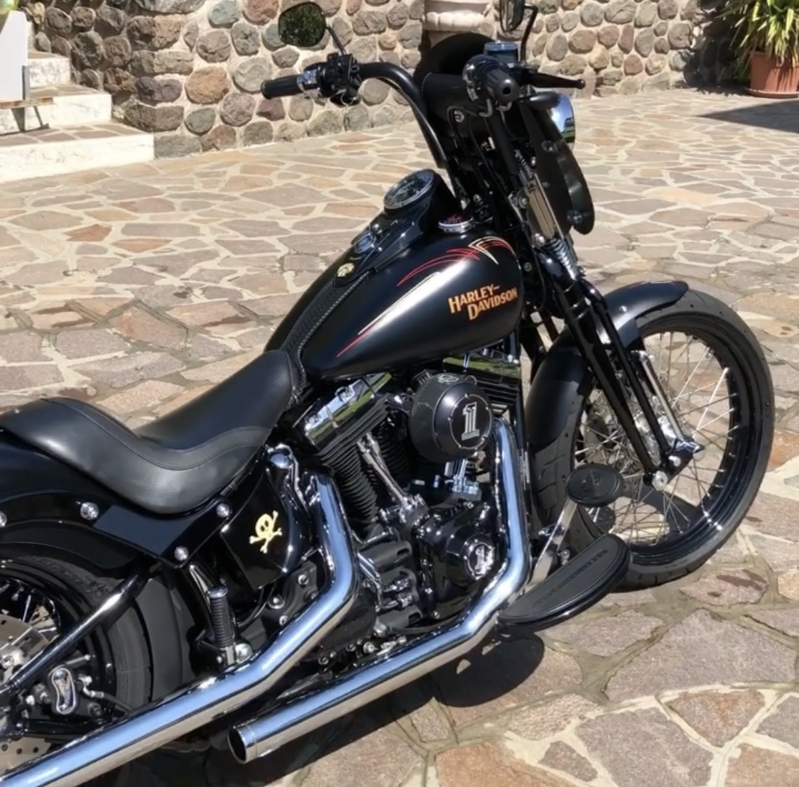 Softail Cross Bones Special