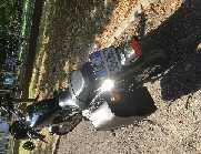 Harley Davidson Sportster XL 883