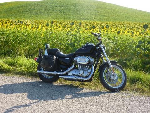 Harley-Davidson Sportster 883XL Low - 2006