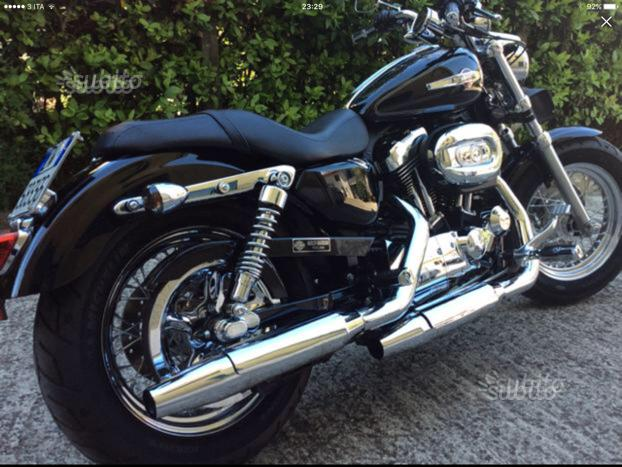 Harley Davidson Sportster 1200 Immacolata