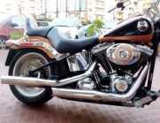 Harley-Davidson Softail Custom - 2000