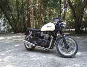 Triumph Bonneville - 2013