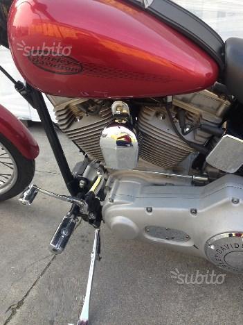 HD Softail Standard con doppia carrozzeria