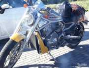 Harley Davidson 1200 Street Rod (2006)