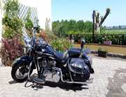 Harley softail Heritage springer