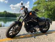 Harley Davidson 883 IRON 2019 - 1 Mese di Vita