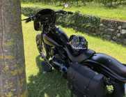 Harley Cross Bones Special