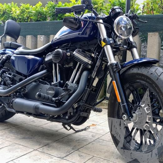 Harley Davidson Forty Eight 1200 custom 2017