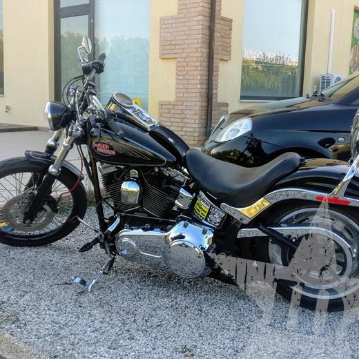 Harley Davidson Softail Custom vendo o...