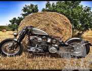 Harley Davidson Softail '97 springer